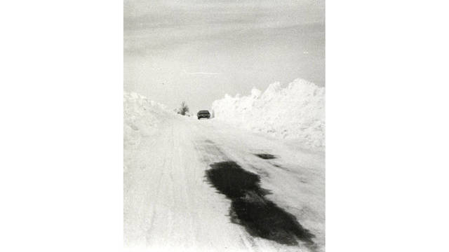blizzard-image-car_236026
