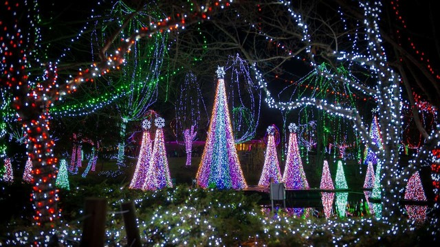Top Spots: 25 light displays, shows, concerts and more that will get you in  the holiday spirit - Top Spots: 25 Light Displays, Shows, Concerts And More That Will Get