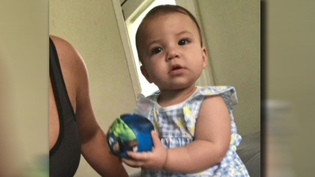 Pit bull kills 8-month-old baby in bouncy chair, police say