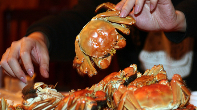 CDC issues warning after Vibrio outbreak linked to crab meat