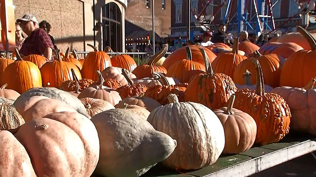 Top Spots: 10 can't-miss fall festivals in central Ohio