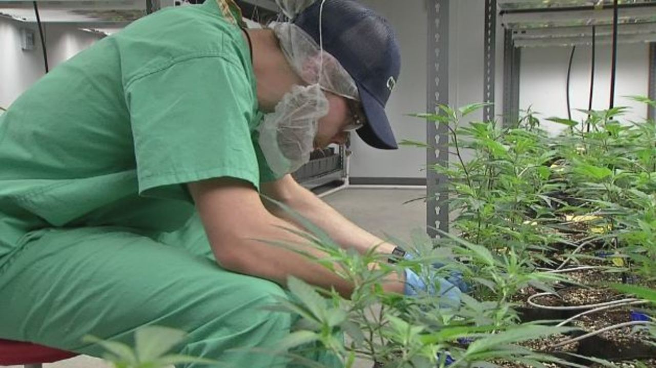 Ohio patients will soon be able to legally buy medical marijuana