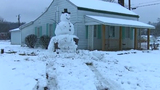 Driver trying to destroy snowman hits stump it's built on instead